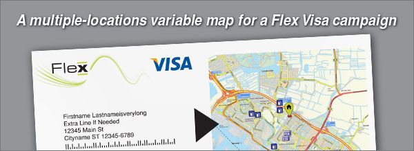 flex_visa_example