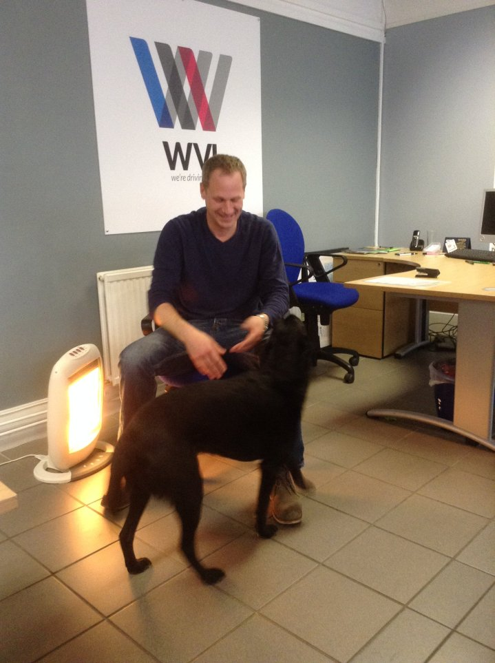 ben and tommy windsor vehicle leasing