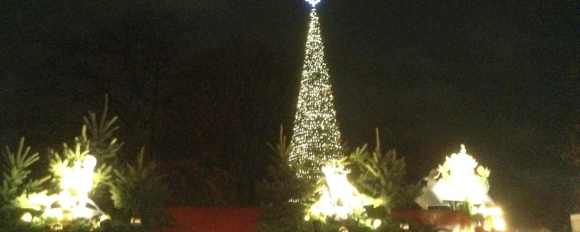christmas tree winter wonderland hyde park