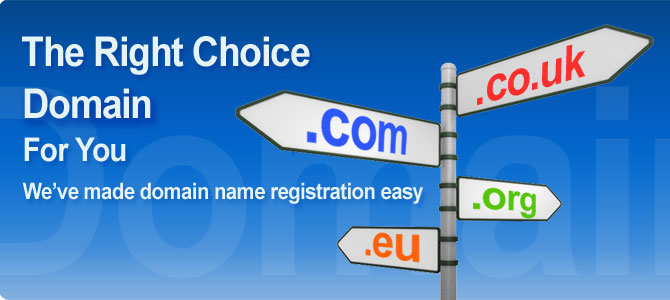 domain names from total registrations