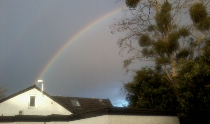 rainbow down the chimney
