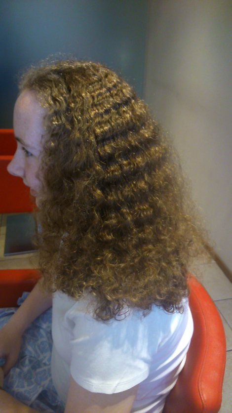 optismooth-frizzy-before-hair