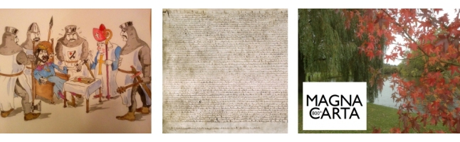magna carta 800 linkedin header