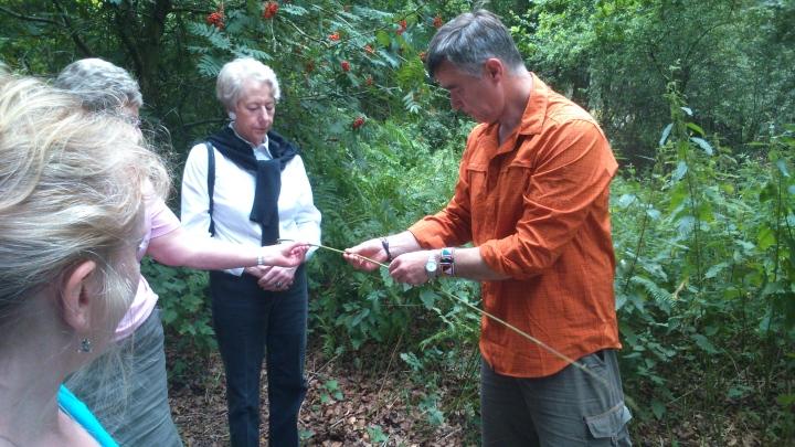 David Willis dot info bushcraft woodland walk tap it and un rap it