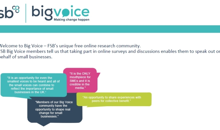fsb big voice making change happen