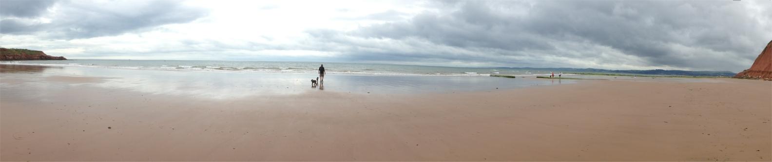 exmouth beach panorama 1584