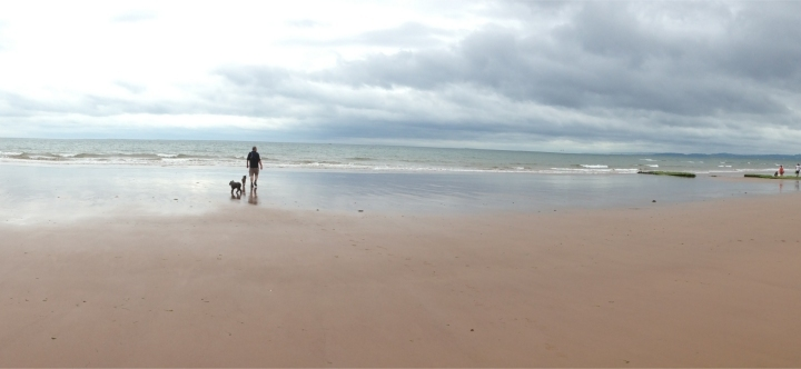 exmouth beach panorama 1584
